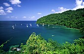 Pirates Bay, Small Antilles, Tobago, Caribbean