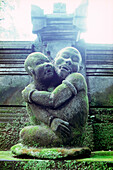 statue of a tempel, Ubud, Bali, Indonesia, Asia, monkey forrest, sightseeing, landmark, tourism, tourist, embracement, hug, saving, protecting, frighten, mystic, religion, culture, tradition, belief, to be in awe, together, united, moss, moss covered, tra