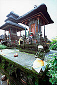 tempel statue with cloth, kitamani, bali, indonesia, asia, praying, folded hands, religious, religion, hinduism, belief, stone, face, gods, quit, peace, mystic, leaves, believing, ceremony, holy, temple, moss