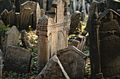Grave stones in a Jewish cemetery, Prague, Czech Republic