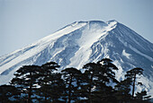 View of the Fujijama, Fujisan, Fuji, the highest mountain in Japan, Honshu, Japan
