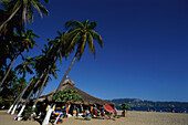 Sandy beach with palm trees, Playa Condesa, Acapulco, Mexico, America