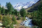 Lonza river, Loeschental valley, Valais, Switzerland