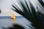 Fisherman in a fishing boat, Piroge, Nosy Be, Madagascar, Africa