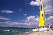 Catamaran on the beach on the west coast near Wustrow, Darss, Baltic Sea, Mecklenburg Western Pomerania, Germany