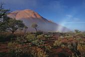 Uluru, Blick Richtung Ayers Rock, Sehenswürdigkeit, Northern Territory, Australien