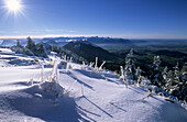 Hochries with first snow of the season and view to range of Bavarian Alps, Upper Bavaria, Bavaria, Germany