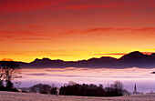 Sea of fog over Chiemsee, Chiemgau Alps in background, Chiemgau, Upper Bavaria, Bavaria, Germany
