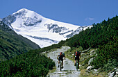 Two mountain bikers riding uphill, mount Similaun in background, Otztal Alps, Tyrol, Austria