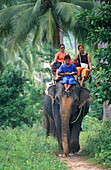 Elephant ride in Ban Durian, Koh Samui, Thailand