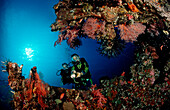Two Scuba diver examine ship wreck Liberty, Bali, Tulamben, Indian Ocean, Indonesia