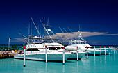 Big Game Fishing Boats, Punta Cana, Caribbean, Dominican Republic