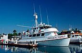 Diving and sport fishing ship Searcher, USA, California, San Diego, Pacific ocean