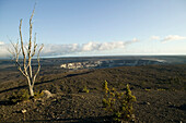 USA, Hawaii, Big Island, Volcanoes National Park, volcano, crater, tree, death, desolate, landscape, width, Halema crater