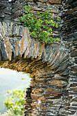 Close-up of castle ruin Grevenburg, Traben-Trarbach, Rhineland-Palatinate, Germany