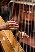 Musician playing harp, Munich Symphony Orchestra, Prinzregententheater, Munich, Bavaria, Germany