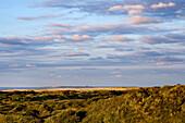 Sundown, Dune, Spiekeroog, East Frisia, North Sea, Lower Saxony, Germany