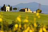 A farm and countryside near San Quirico d'Orcia, Siena, Tuscany, Italy