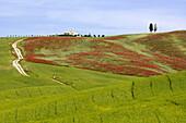Countryside in the Crete Senesi, Tuscany, Italy