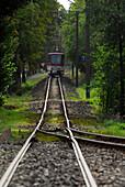 A train track running through the forest, Gotha Waldbahn, Tabarz, Thuringia, Germany