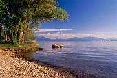 Boy in dinghy on Lake Chiem, Seebruck, Chiemgau, Bavaria, Germany