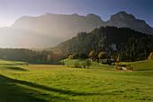 View over pasture to Reiter Alpe massif, Ramsau-Antenbichl, Berchtesgadener Land, Bavaria, Germany