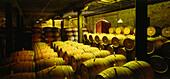 The Hess Collection Winery, near Napa, Napa Valley, California, USA, America