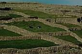 Stone walls, Aran Islands, Ireland