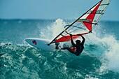 Windsurfer, Hookipa Beach, Hawaii