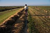 Cyclist on Borkum, Lower Saxony, East Frisian Islands, Germany