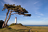 Lighthouse at the Dornbusch, Hiddensee island, Mecklenburg-Western Pomerania, Germany