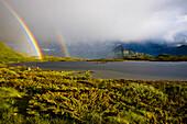 A double rainbow, two rainbows with rain showers and sunshine, Sandsletta, Austvagoya Island, Lofoten, Norway