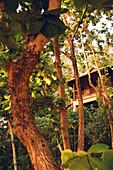 Bungalow resort in the rainforest, Koh Lanta, Ko Lanta, Thailand; Asia