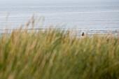 Two boys bathing in North Sea, Sylt island, Schleswig-Holstein, Germany