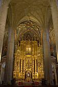 Inside the chancel, vault of Cathedral, Concatedral Santa María de Redonda, Camino de Santiago, Logrono, La Rioja, Spain