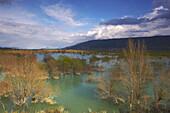 Flood water in spring, Embalse de Yesa, Aragon, Spain, Europe