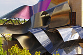 Hotel from architect Frank Gehry and Bodegas Marqués de Riscal, oldest Rioja winery, Elciego, Euskadi, País Vasco, Spain