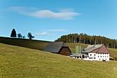 Modern Black Forest Farmhouse, near Schonach,  Black Forest, Baden Wuerttemberg,  Germany