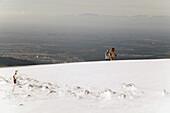 Winterwalk on the Kandel, near Waldkirch, Black Forest,  Baden-Wuerttemberg, Germany