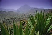 Mountain Scenery, Sao Jorghe, Santiago, Cape Verde Islands