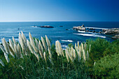 Rocher de la Vierge, Biarritz, Basque Region, Atlantic Coast, France