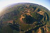 Aerial photo taken from a hot air balloon, Napa Valley, California, USA