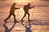 Two men cross country skiing over the Plateau, Filipova Hut, Sumava, Bohemian Forest, Czech Republik