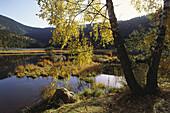 Kleiner Arbersee im Herbst, Lamer Winkel, Bayerischer Wald, Oberpfalz, Bayern, Deutschland