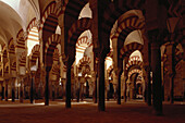 Horseshoe arches and columns in the Mezquita, the Great Mosque in Cordoba, Andalusia, Spain