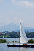 Young woman sunbathing on landing stage, Bavarian Alps in background, lake Staffelsee, Upper Bavaria, Bavaria, Germany