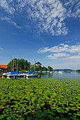 Lake Mattsee with sailing boats, Salzkammergut, Salzburg, Austria