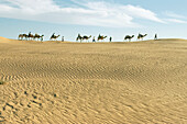 Caravan, People and camels on the horizon, Grand Erg Occidental, Sahara, Algeria, Africa