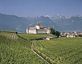 Aigle city castle. Vaud. Switzerland