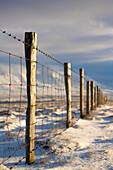 Fence, Iceland